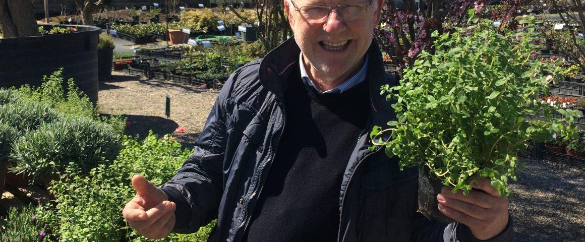 Carlo Pagani maestro giardiniere