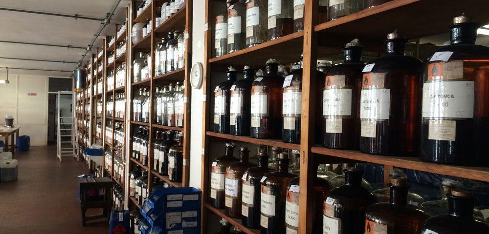 Erbe, aromi, essenze: Barbara Fogagnolo, aromatiere, ci racconta tutti i segreti