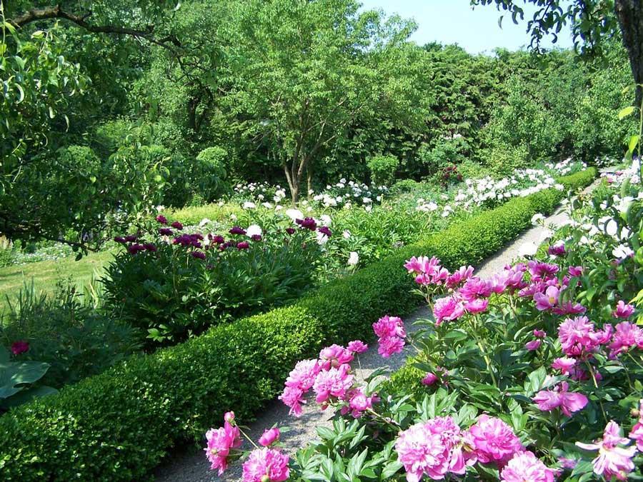 Vista di Highland Park, dove si tiene il Lilac Festival di Rochester