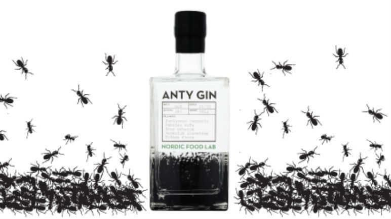 Anty Gin, il gin all'essenza di formiche rosse