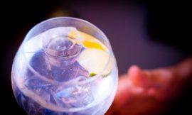 Gin Tonic and more: la parola ai barman
