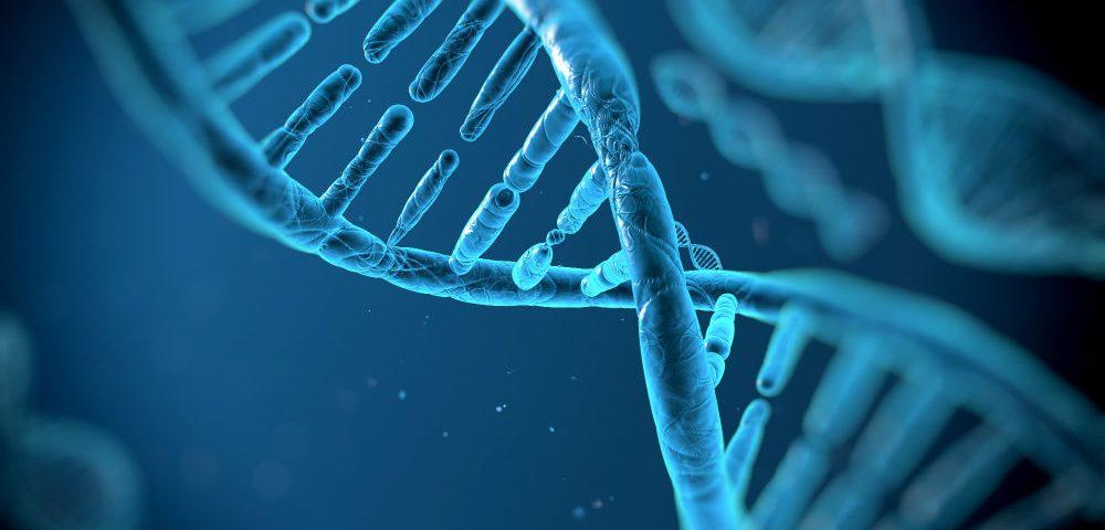 Scoperto il gene della dipendenza dall'alcol grazie ai moscerini della frutta