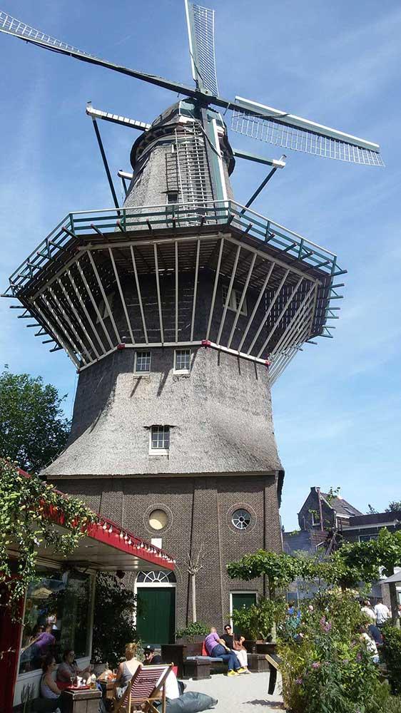 Una caratteristica vista olandese