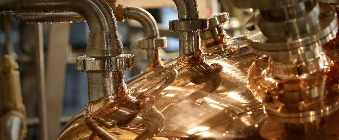 Tour delle distillerie di gin in UK