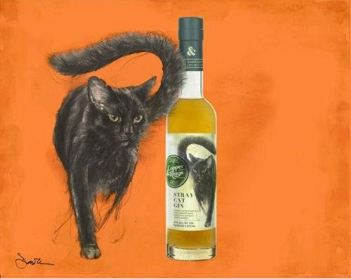 L'immagine promozionale dello Stray Cat Gin