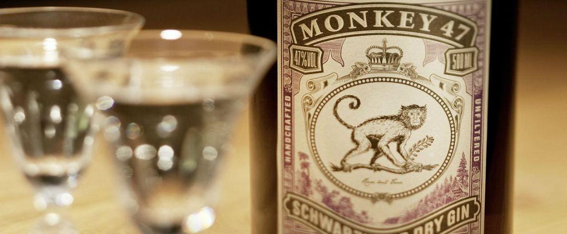 Monkey 47, una storia di forza e indipendenza