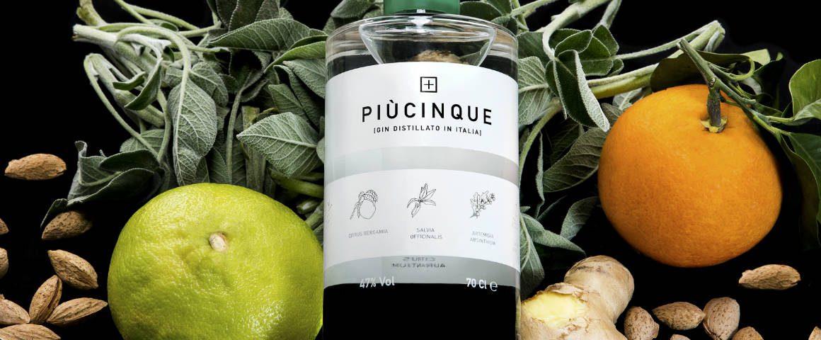 I gin del Gin Day: PiùCinque Gin, amicizia e passione venete