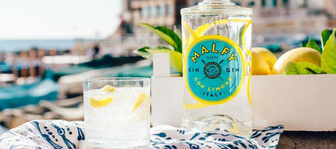 Top 10 dei gin da bere quest'anno