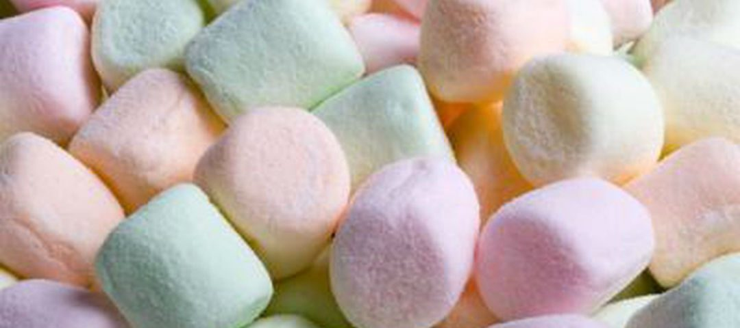 gin tonic marshmallows