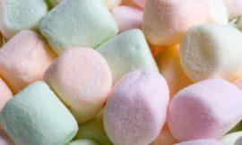 gin tonic marshmallows