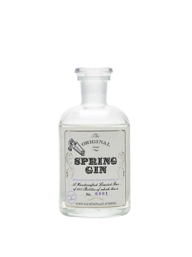 Recensione Spring Gin