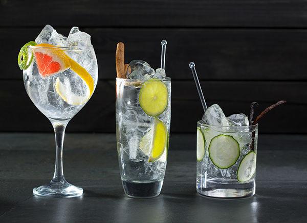 Nessuna degustazione gin sarebbe completa senza un Gin Tonic!