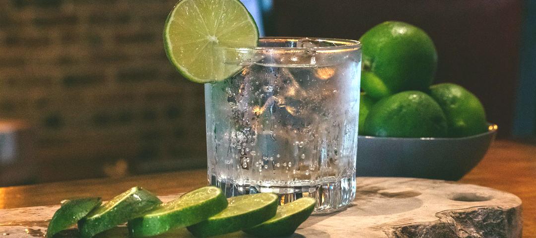 """Gindovinello: scopriamo le sfumature del gin con il gioco """"se fossi"""""""