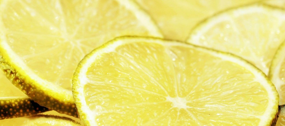 limone jerbario