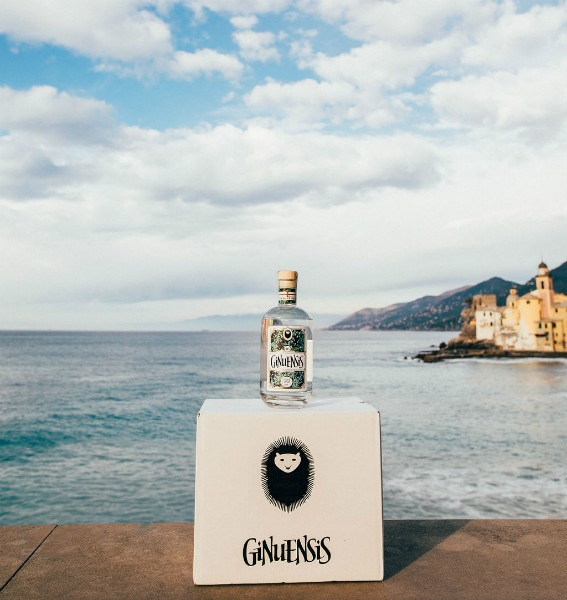 ginuensis hand crafted gin