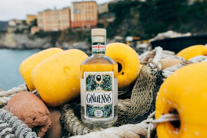 ginuensis gin