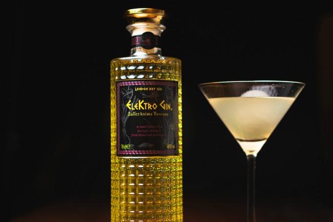elektro gin