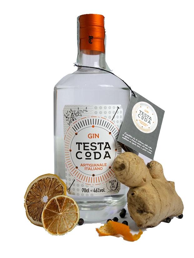 Recensione TestaCoda Gin