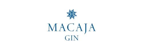 modello logo gin.it