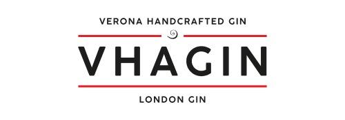 Vhagin_logo